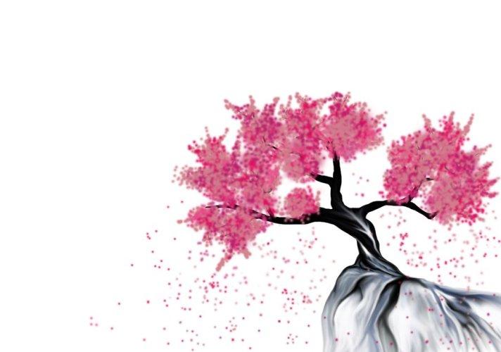 cherry_blossom_v2_0_plain_by_thinkingaboutforever-d41kuq1.jpg